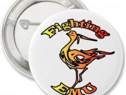 Fightning EMU Buttons