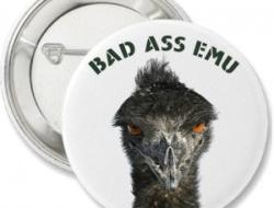 Bad Ass EMU Buttons